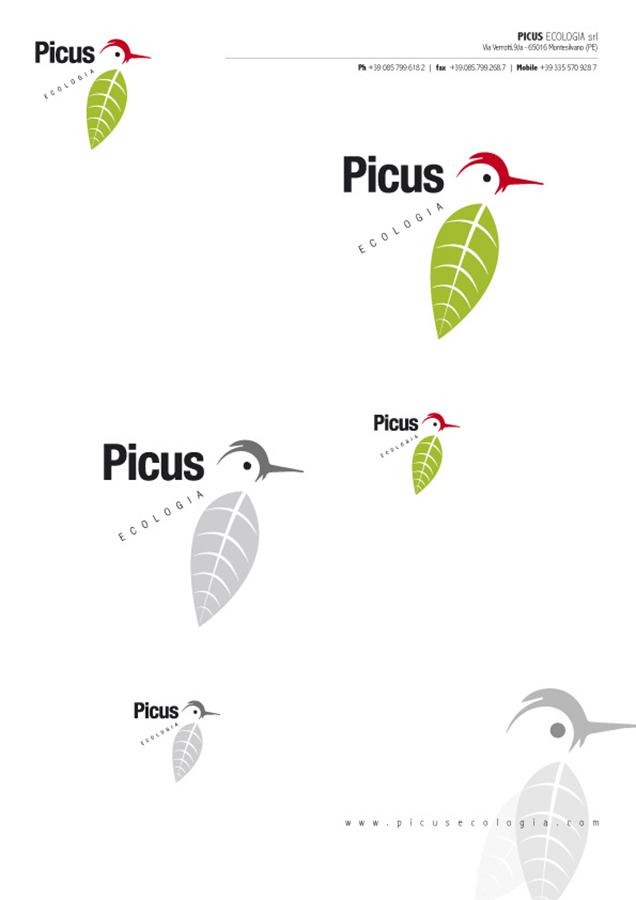 picus-02