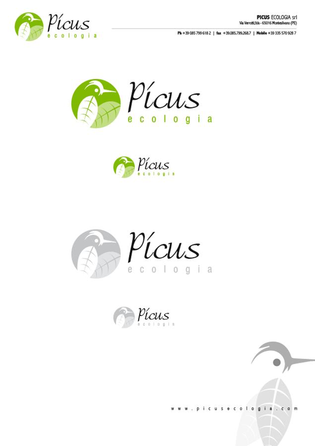 picus-06